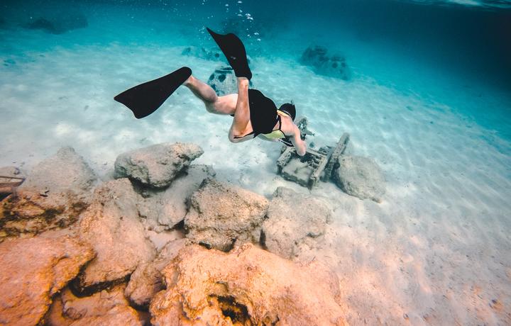 Snorkel Museo Subacuático